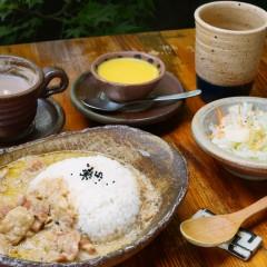 薬膳コロマカレー(ミルク+チキン)